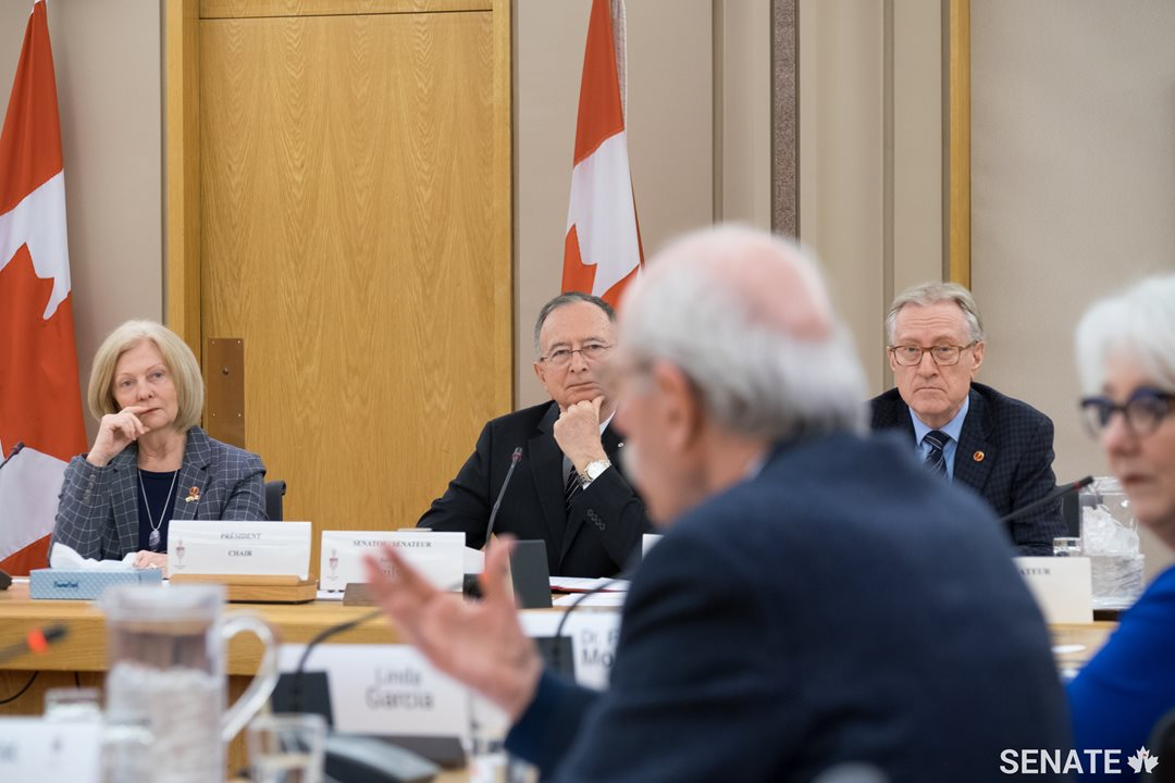 Dr. Hakim makes a presentation during the panel discussion.