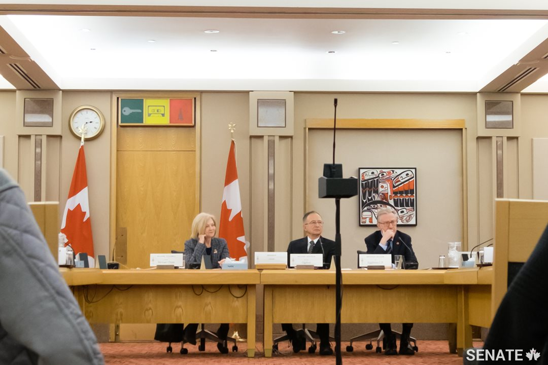 Members of the Senate Committee on Social Affairs, Science and Technology answer questions from audience members.