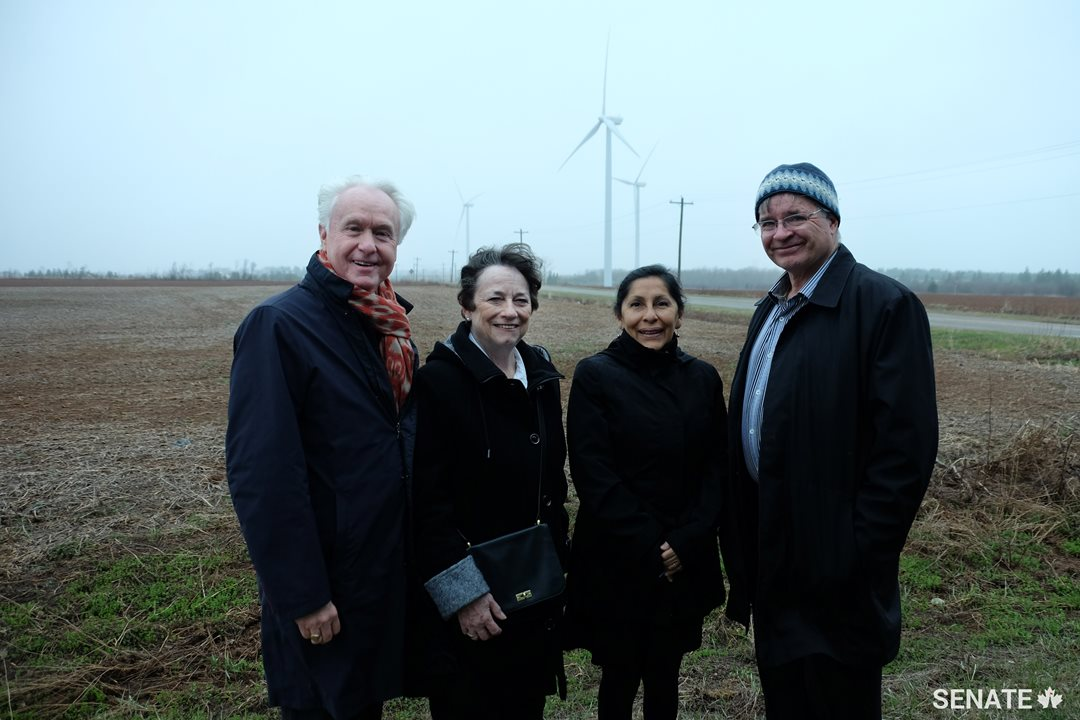 Senators Douglas Black, Diane Griffin, Rosa Galvez and Dennis Patterson take in the Summerside Wind Farm in P.E.I..