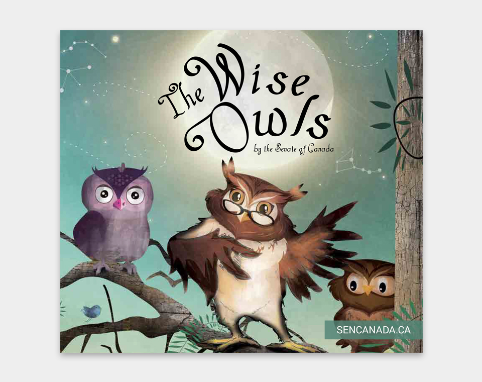 The Wise Owls book cover