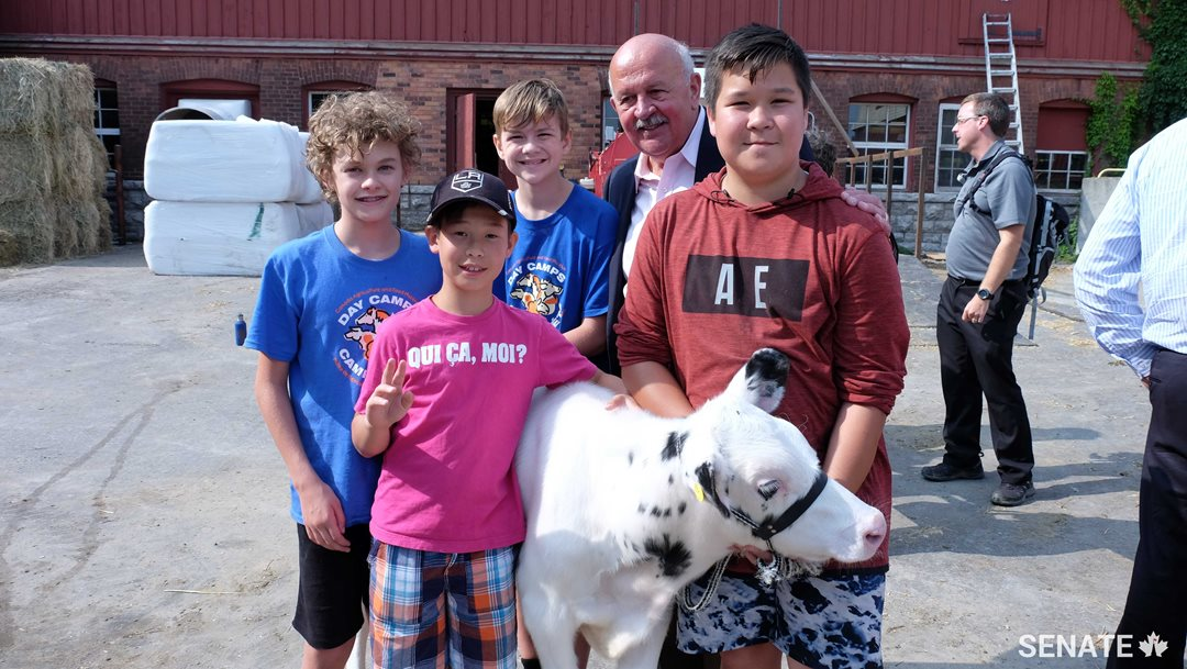 During the week of August 21-25, Tiberius the calf was in the care of campers, from left, Lawson MacDonald-Quig, Peter Gemmell, Kirk Bowby and Patrick Gemmell.