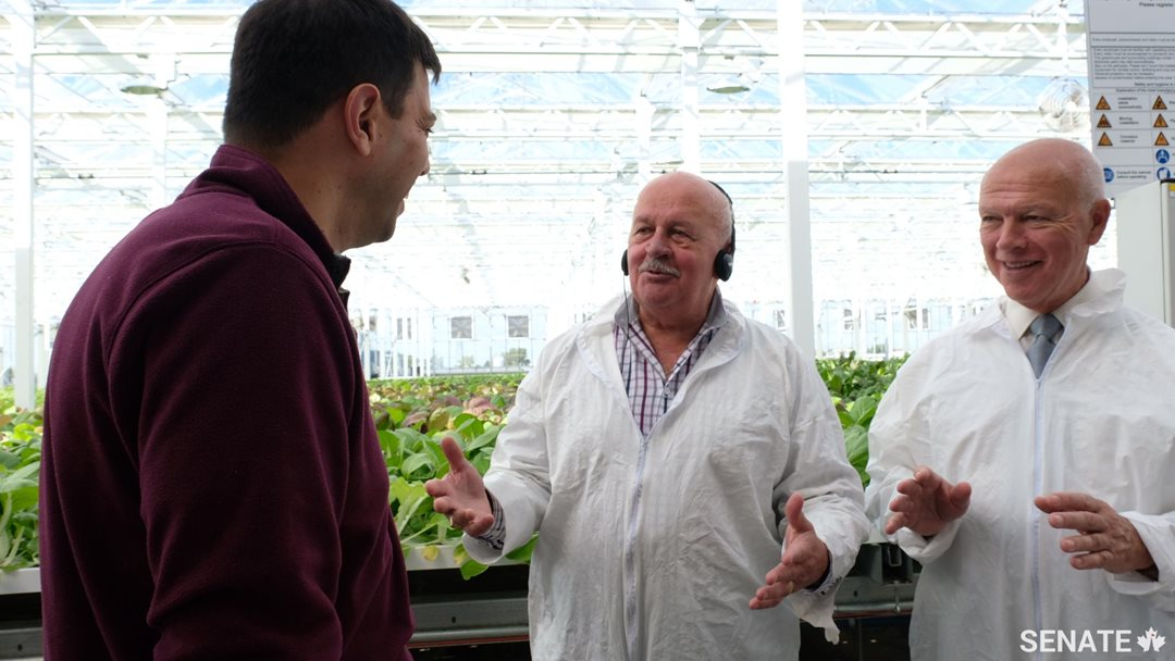 Senators Terry Mercer, centre, and Jean-Guy Dagenais, right, visit Lufa Farms, a greenhouse on Montreal Island that allows farmers to grow vegetables in an urban environment, reducing transportation requirements. In addition, the use of rooftops for growing food takes advantage of space that would otherwise be lost.