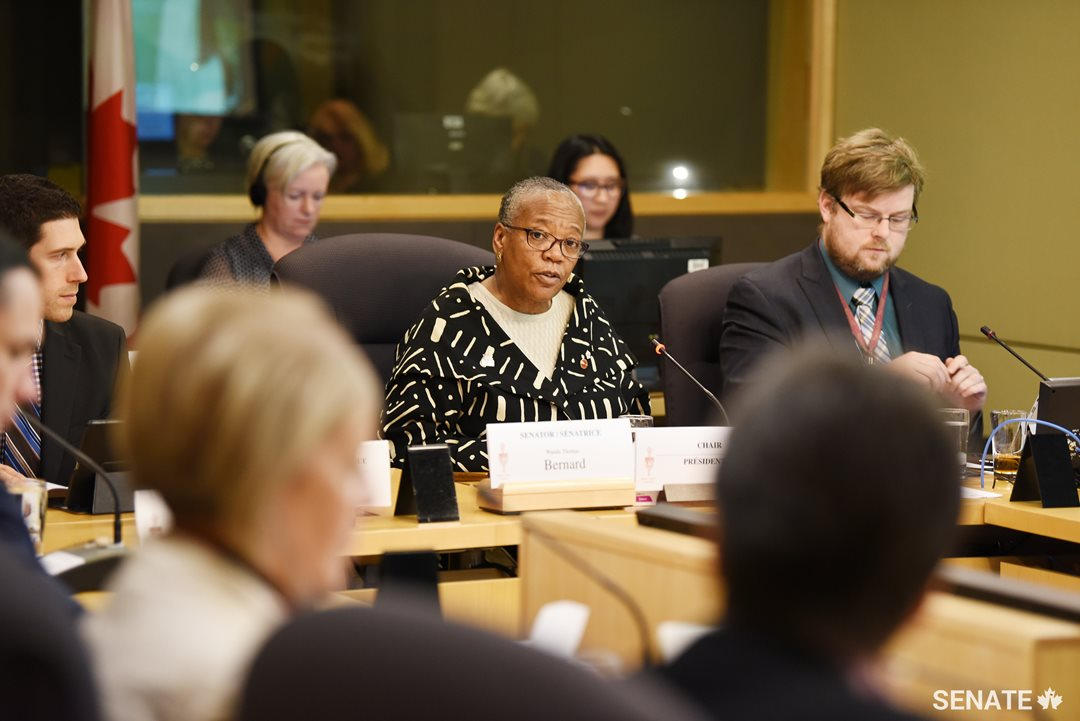 Committee chair Senator Wanda Thomas Bernard tells the Senate Committee on Human Rights that partnerships are needed to combat systemic racism in Canada. The committee devoted its special Black History Month session to the United Nations' International Decade for People of African Descent.
