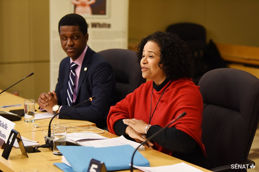 Agang Tema, from the University of British Columbia's Africa Awareness Initiative, and Michelle Williams, Schulich School of Law professor, testify to the Senate Committee on Human Rights.