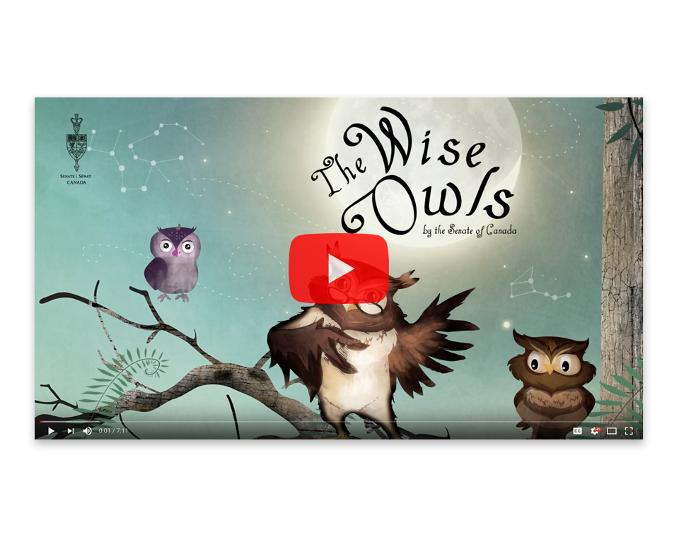 The Wise Owls video
