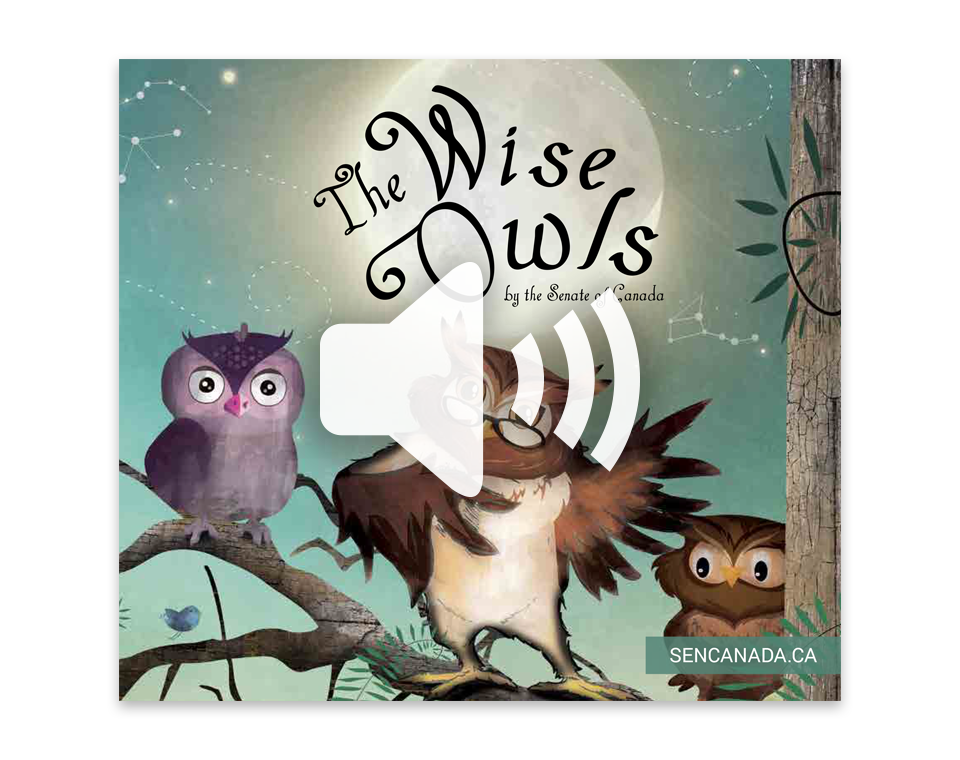 The Wise Owl audio book