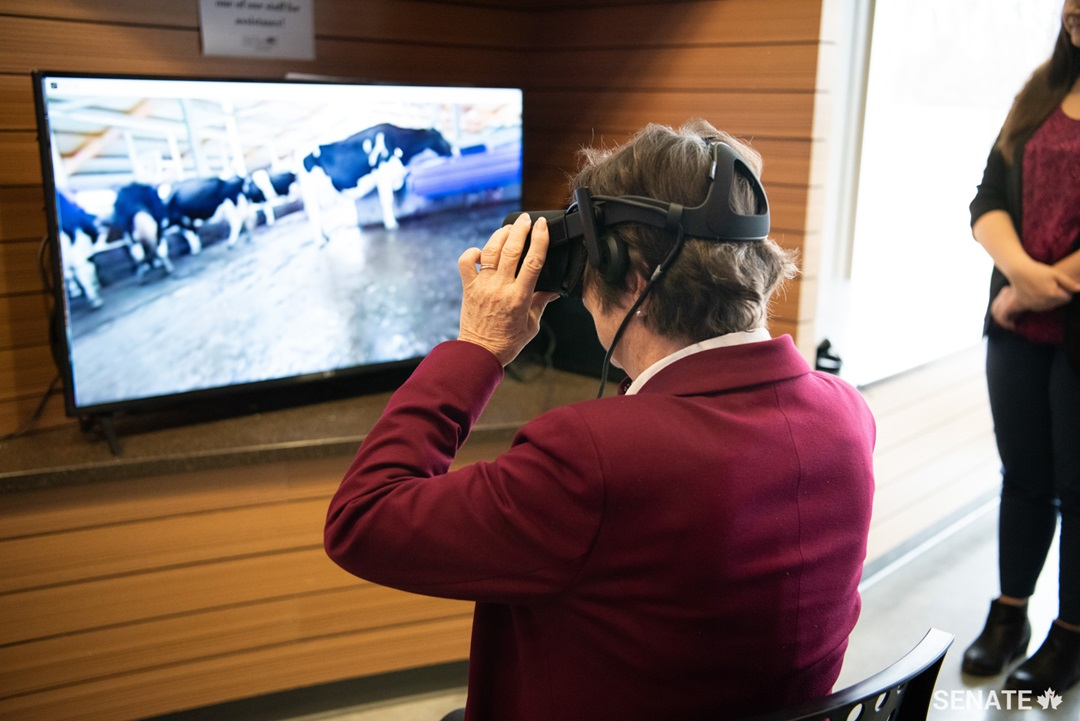Senator Diane Griffin tests a virtual reality headset that immerses the user in the reality of a farm. It demonstrates the various stages in the development of processed food products.